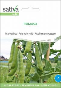 Markerbse<br>&quot;Primaso&quot;
