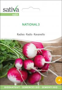 Radies National 3